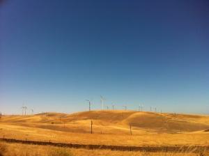 windmills san fran